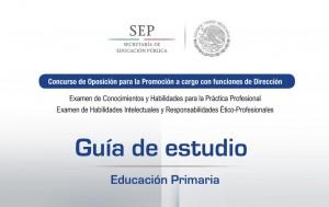 GuiaEstudioDirector