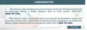 Lineamientos INEE 1