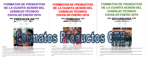 FotmatoProductosCTE