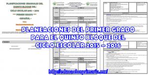 Plan1ero5b