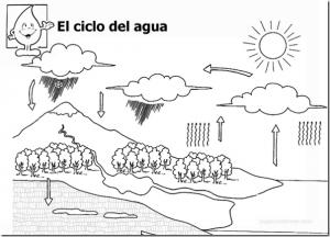 cicloagua15